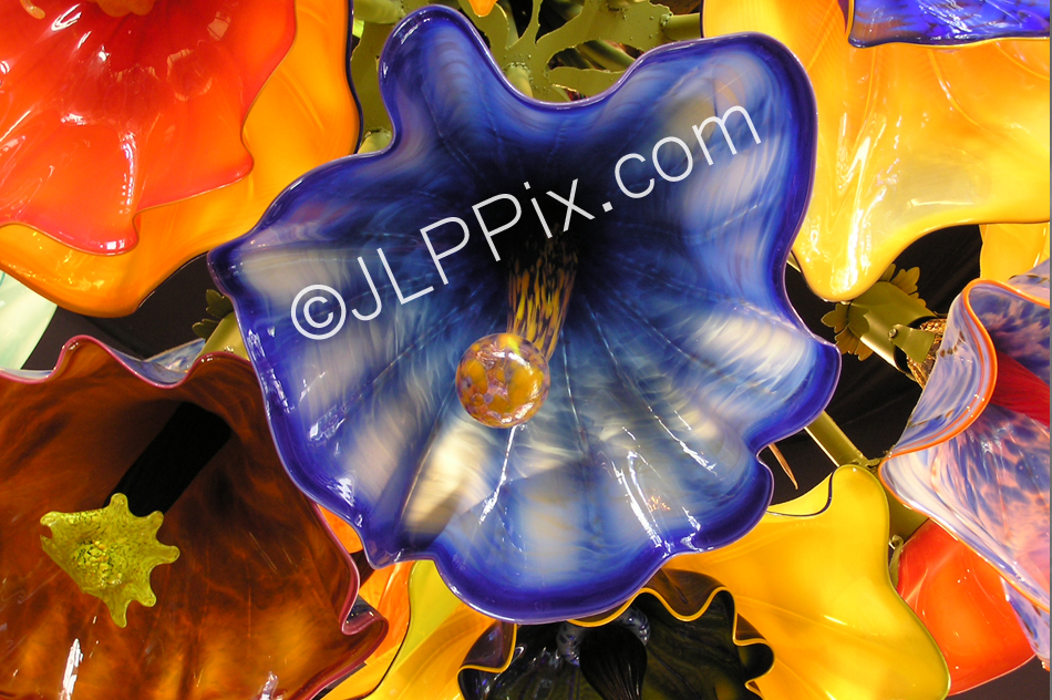 ChihulyFlowers
